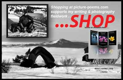 splash page for picture-poems.com shop