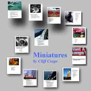 metaphysical miniatures